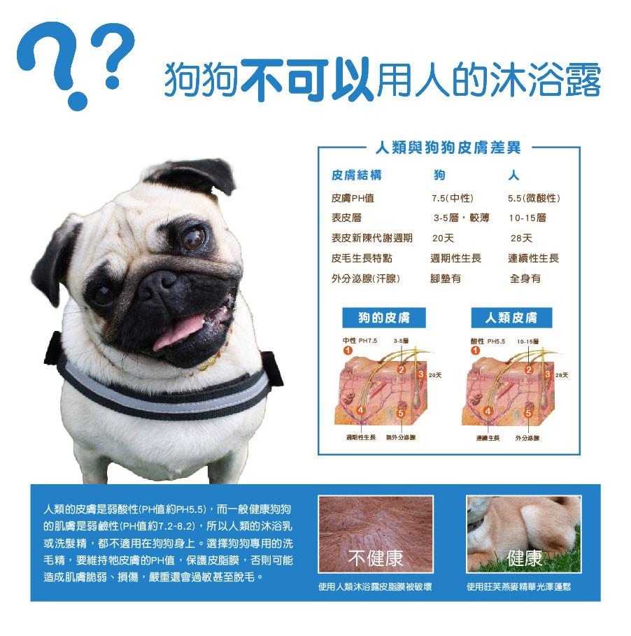 狗狗到底可不可以用人類的沐浴露?